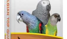 Deli Nature 20 Amazonas Park - Serengeti 2 kg